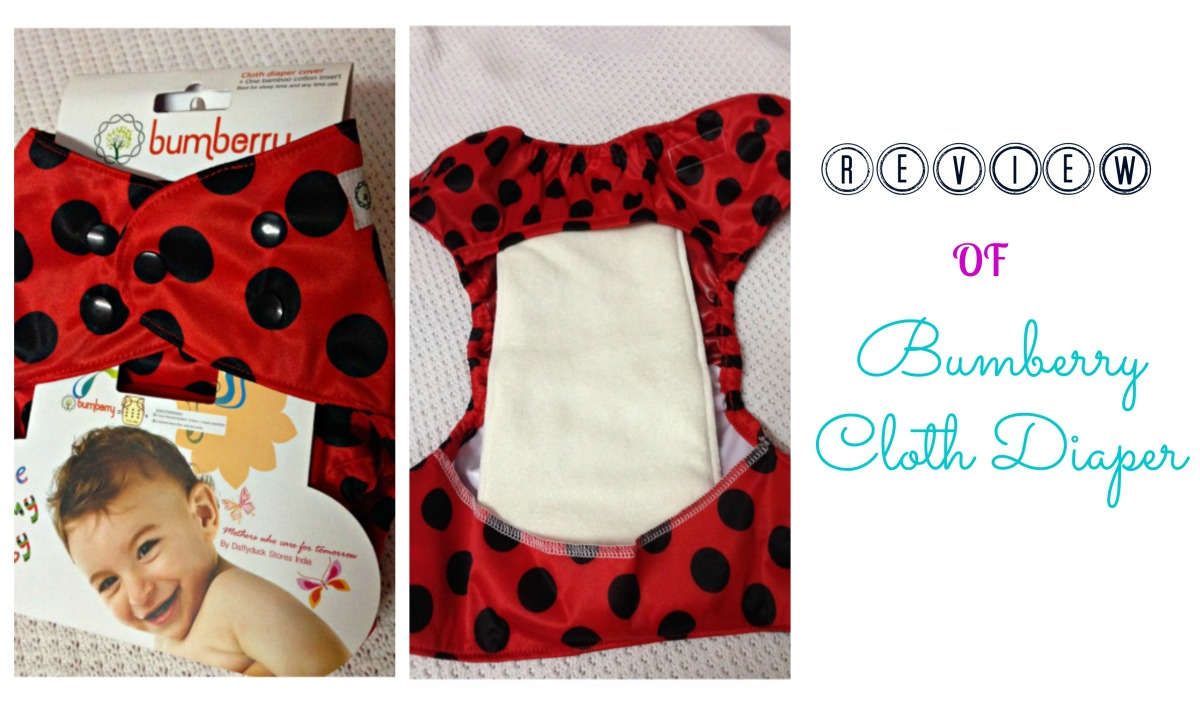 Bumberry Cloth Diaper Review